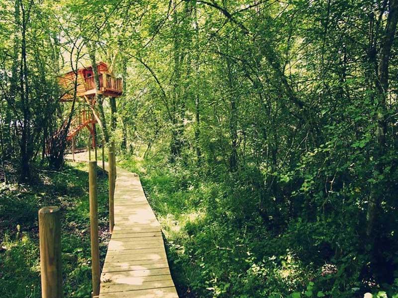 Las cabañas en árbol de Basoa Suites en Navarra / Foto: basoa suites