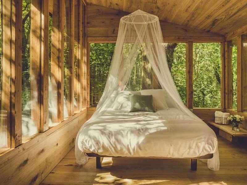 Suite Mirua / Foto: basoa suites